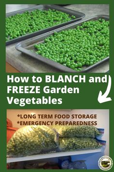 How to Safely Freeze Vegetables - Peas, Beans, Carrots - - How to blanch and freeze garden peas - quick and easy! When you are harvesting peas, preserve some for winter. Everything you need to know about blanching. Freezing Vegetables, Canning Vegetables, Frozen Vegetables, Fruits And Veggies, Fresco, Canning Food Preservation, Preserving Food, Canned Food Storage, Gardens