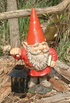 Gnomes - gnomes Photo