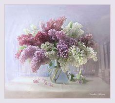 Nattallia Shloma: The Scent of Lilacs