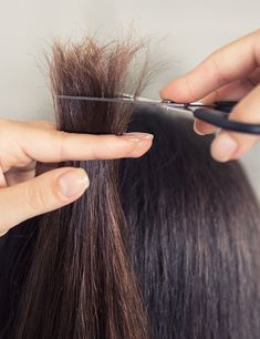 If you have no time to go to a hair salon to get your hair cut done. In this post, we have included few steps to cut your own hair. Point Cut Hair, Cut Own Hair, Cut Hair At Home, Hair Cuts, Diy Hair Trim, Trim Your Own Hair, How To Cut Your Own Hair, How To Trim Hair, Bob Haircut For Fine Hair