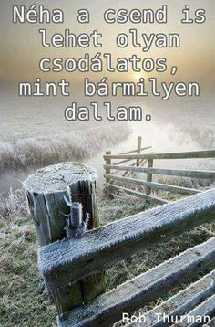 Funny Quotes, Messages, Thoughts, Winter, Bunny, Funny Phrases, Winter Time, Funny Qoutes