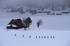 Steve McCurry, KASHMIR. 1999. A line of soldiers walks through the snow.