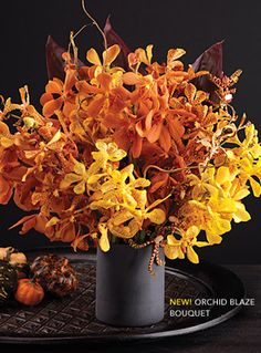 Orchid Blaze Bouquet featuring mokara orchids and tiger tail arandas in a coordinating black matte vase #Halloween