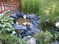 """Bog filter- pond liner and PVC tubing with holes drilled for circulating water from the pump. Partially filled with 1/4"""" pea gravel."""