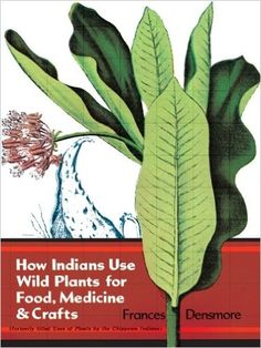 A very handy older publication. wild plants for food and medicine in north america - Google Search