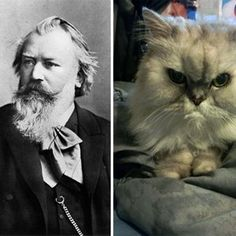 The great composers are all cats: