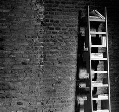 the Casimir Meubelen Ladder n°1