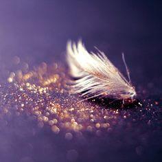 Golden Glitter - Bokeh Photography