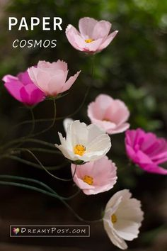 Tissue paper Cosmos tutorial and free template, #paperflower #flowertutorial #flowertemplate