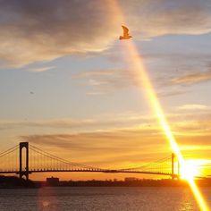 #NewYearsEve #HappyNewYear ##TheBronxProject #WinterSolstice #TomorrowPeople #FollowTheSun #Zeitgeist #Zeitreisender #Amor #VeganForLife #SolarPower #winter2017 #Bronx #SeaCruzNewYork #WinterInNewYork #picoftheday #instagram #foto #sol #ThirdEye #12312017 #Health #Light #Peace #Hope #LOVE