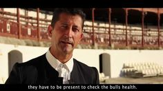 Excellent documentary about bullfighting; mostly in Spanish with English subtitles. Part 2 of 2