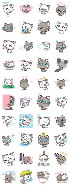"""""""Hoshi & Luna Diary"""" the 3rd series. All cat lovers don't miss. Send it to your friends now!."""