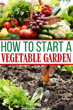 Spring is in the air and it's a perfect time to start thinking about your vegetable garden. Here are helpful tips on How To Start A Vegetable Garden. Gardening growing tomatoes How To Start A Vegetable Garden Starting A Vegetable Garden, Vegetable Garden For Beginners, Home Vegetable Garden, Fruit Garden, Gardening For Beginners, Garden Seeds, Planting Seeds, Fall Vegetables, Healthy Vegetables