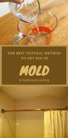 Bathroom ceiling mold always seems to constantly appear. Read here for the best natural method to get rid of bathroom ceiling mold. Mattress Cleaning, Oven Cleaning, Toilet Cleaning, Cleaning Hacks, Bathroom Cleaning, All You Need Is, Fun To Be One, Homemade Shower Cleaner, Get Rid Of Mold