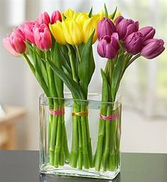 Modern Tulips Bouquet