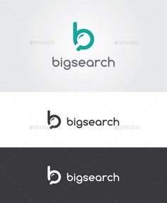 Big Search Logo