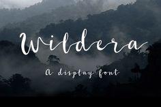 Wildera Free Font By TheHungryJPEG