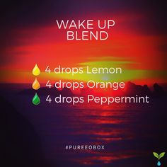 Wake up diffuser blend.  Be sure to diffuse this blend every morning for a quick pep in your step! Comment below and let us know how much you enjoyed it! #wakeup #mornings #essentialoilblends.. Wake Up Blend - 4 drops lemon essential oil- 4 drops orange essential oil- 4 drops peppermint essential oil.. Looking to discover new essential oils every month without breaking the bank?Take a peek at Pure EO Box!