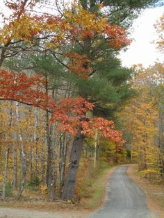 Autumn in New Hampshire, the best!!!! You wouldn't know until you went.