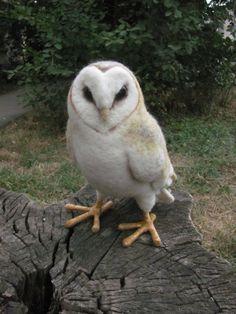 Life sized needle felted Barn owl by HandmadeByNovember on Etsy, $200.00