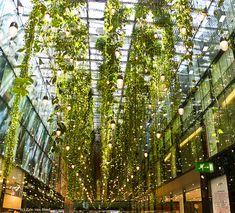 Hanging Gardens, 1 Million Lights