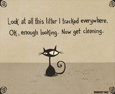 Look At All This Litter I Tracked Everywhere. Ok, Enough Looking. Now Get Cleaning. (Brainless Tales Cat)