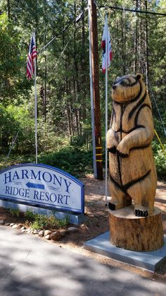 Harmony RIdge near Nevada City - DOG FRIENDLY