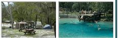 Blue Springs Park, High Springs, Florida - 386.454.1369 Swimming/Camping rates;  camping for tent and RV's