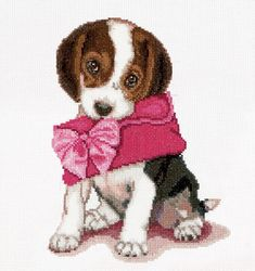 A sweet beagle puppy carrying a pink purse