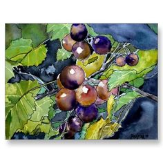 Shop grape vine still life fruit art painting poster created by dereklovessheila. Personalise it with photos & text or purchase as is! Watercolor Postcard, Watercolor Fruit, Fruit Painting, Watercolor Flowers, Simple Watercolor, Watercolor Ideas, Watercolor Techniques, Famous Watercolor Artists, Vine Fruit