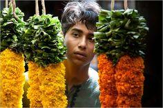 Life of Pi- Pondicherry