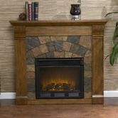 Found it at Wayfair - Blake Electric Fireplace in Antique Oak