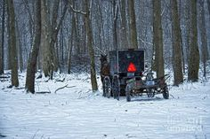 Winter Amish Buggy Art for Sale (Page #2 of 5) - Fine Art America