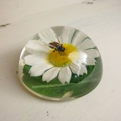 Items similar to Super-kitsch 1960s vintage paper weight. Daisy & Bee waterclear resin paperweight. on Etsy
