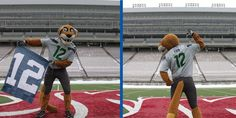 Butch T. Cougar is Waving The Flag for the Seattle Seahawks! Good luck vs. Atlanta! Go Cougs! Go Hawks!