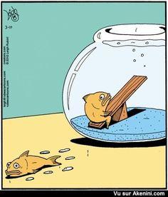 Jeux dangereux pour les poissons - Dangerous games for fish