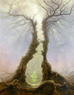 """""""We must not always talk in the market-place of what happens to us in the forest."""" ~Nathaniel Hawthorne"""