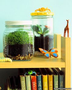Bookshelf Terrarium  Kids can watch plants grow before their eyes with a homemade terrarium.     Cover the bottom of a jar with gravel, and add 1/4 inch of ground charcoal. Mix 2 parts potting soil, 2 parts peat, and 1 part builder's sand; add to jar. Dig small holes for plants, such as sweet flag or Chinese elm. Spray completely with water before putting on lid. The terrarium should retain moisture, so rewatering won't be necessary, but check the soil periodically to be safe.