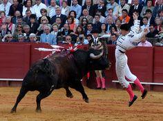 Tú también puedes poner tu granito de arena para apoyar y homenajear a El Chano. ¡El 7 de septiembre, en Aranjuez, David Mora matará seis toros para recoger fondos para ayudar al banderillero en su duro recuperación! http://www.toroticket.com/111-entradas-toros-aranjuez