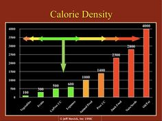 A Common Sense Approach to Sound Nutrition by Jeff Novick, MS RD (updated 3/20/2012) with a great calorie density chart