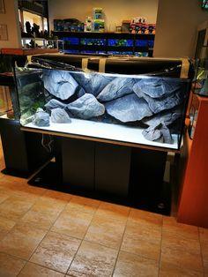 Aquarium Rocks, Aquarium Setup, Marine Aquarium, Malawi Cichlids, African Cichlids, South American Cichlids, Cichlid Aquarium, Rock Background, Aquarium Backgrounds