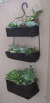 Use shower caddies to make a hanging garden. | 30 Insanely Clever Gardening Tricks