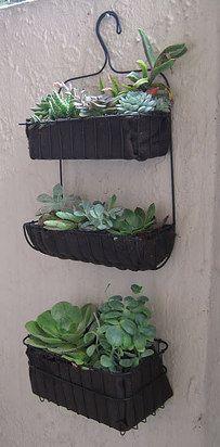 Use shower caddies to make a hanging garden.   30 Insanely Clever Gardening Tricks