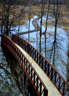 Path is Narrow. Ottawa River, Spring 2014, Paths, Canada