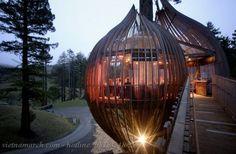 Treehouse - Thiết kế nhà cây độc đáo 05