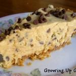 Peanut Butter Chocolate Chip Pie - Growing Up Gabel