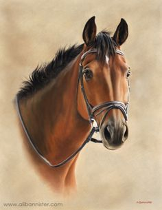 Tibbs - horse painting by Ali Bannister