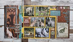 Layout: ZOO *safari*
