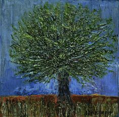Small Olive Tree 4