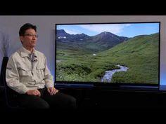 Panasonic 2014 VIERA TVs - Picture Quality
